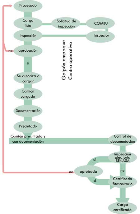 diagrame-processus